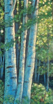 "Birch Clump, acrylic on texturized canvas, 20"" x 40"", 2009, SOLD"